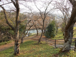 三室山から竜田川を望む